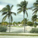 映画『フロリダ・プロジェクト』